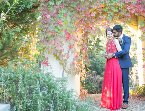 Mehul & Maeve's Wedding – Langverwagt Wine Estate